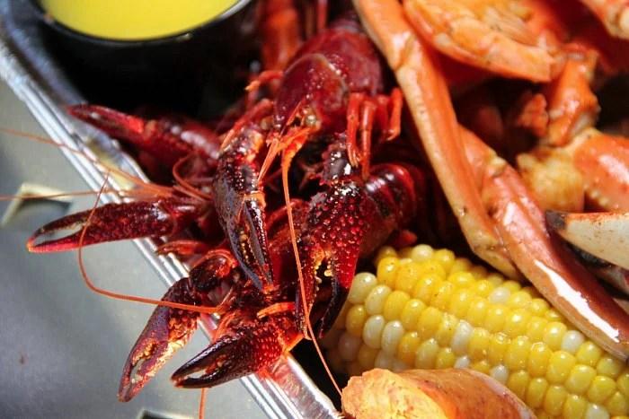 Ocala Lobster Claw
