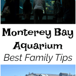 Family Tips Monterey Bay Aquarium