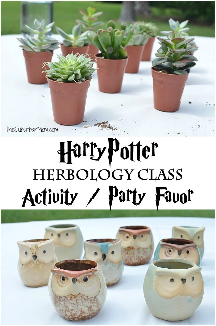 Harry Potter Herbology Class Party Favor