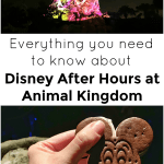 Everything You Need To Know About Disney After Hours At Animal Kingdom