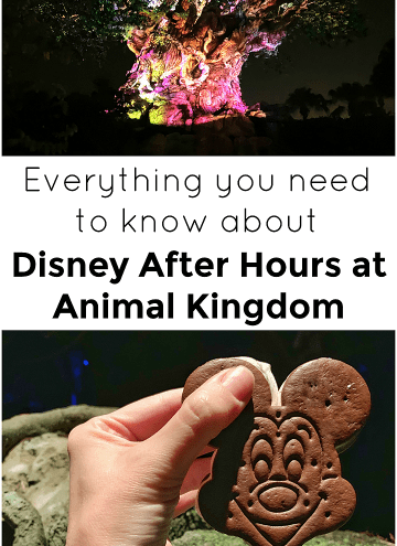 Disney After Hours At Animal Kingdom Everything You Need to Know