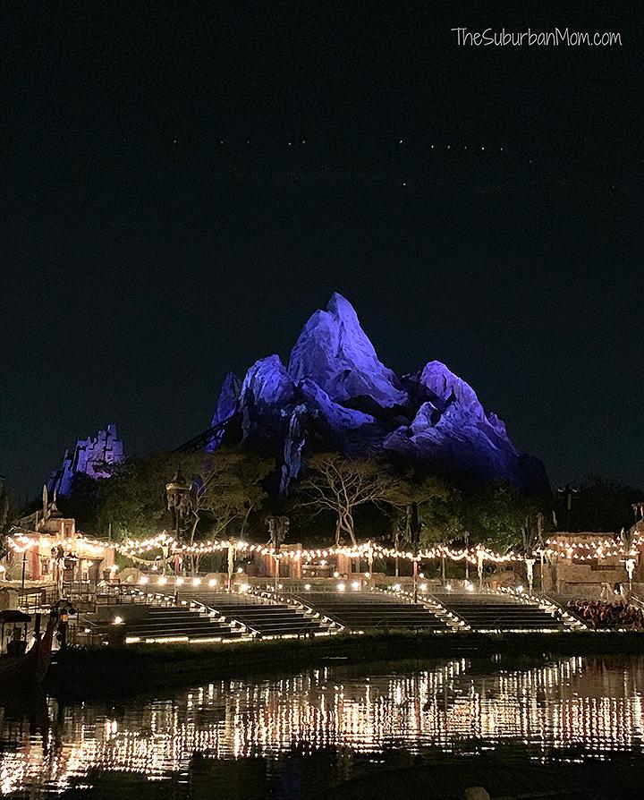 Disney Animal Kingdom At Night