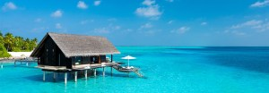 Maldivian Bliss Featured