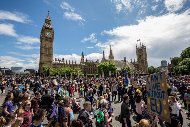 Thousands marched on Westminster last year.. after the referendum