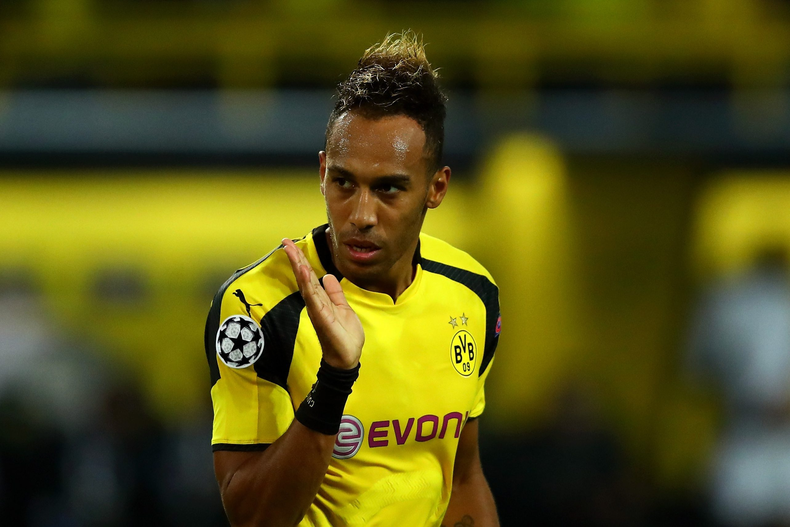 borussia dortmund transfer news latest
