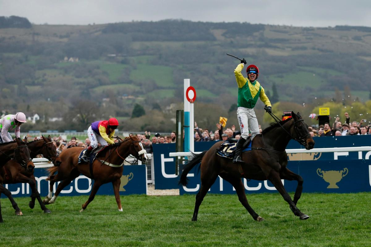 Race Outcomes and Lessons from Cheltenham Festival 2017