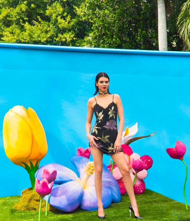 Kendall posed against the boldly coloured backdrop