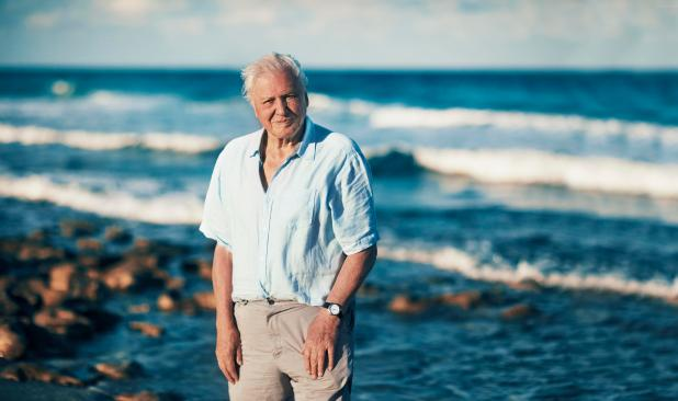 Sir David Attenborough is back narrate the latest BBC show