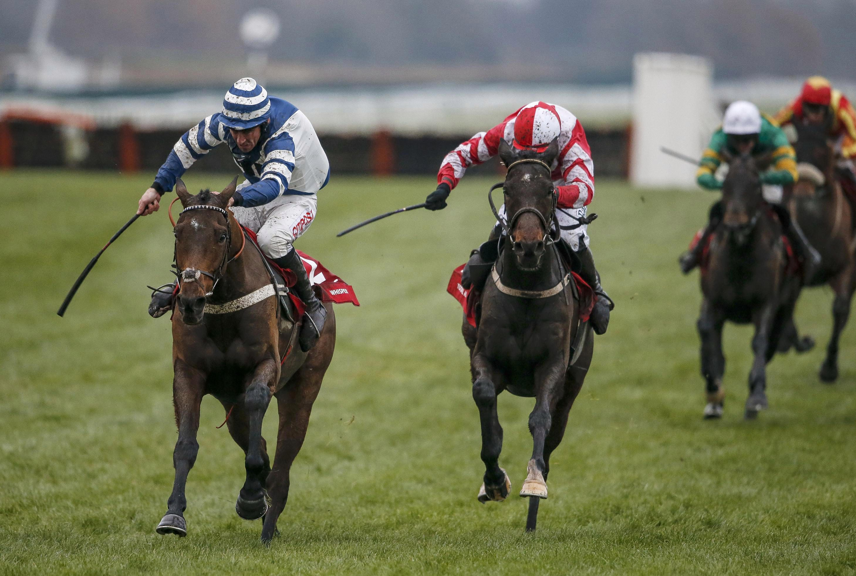 Total Recall (right) will run in the Gold Cup before the National