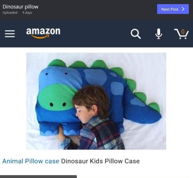 Esta fue la imagen que se utilizó para ilustrar la Almohada Dinosaur Kids de Amazon