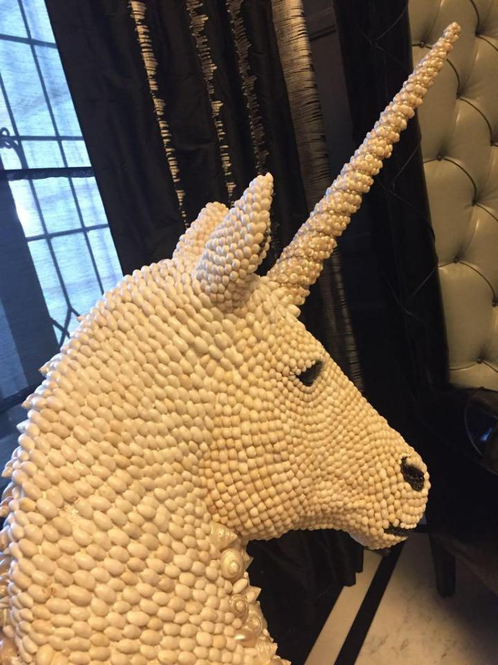 Tamara bought the unicorn from a retailer in Essex