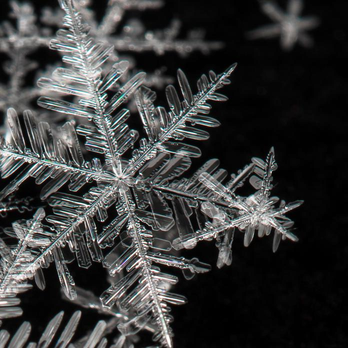 The term snowflake applies to young people who think they are special and unique, like real snowflakes