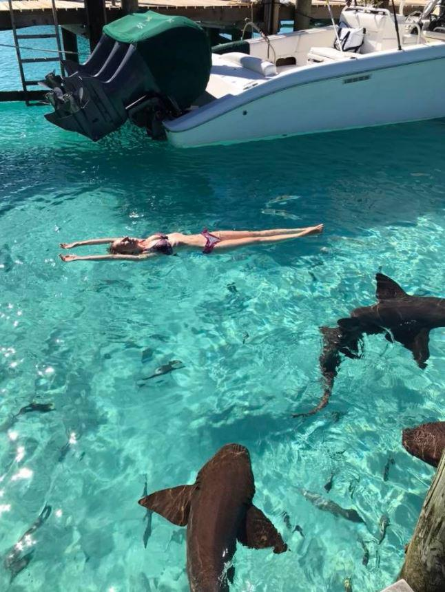Sarah was snapped swimming with the sharks before one of them attacked her