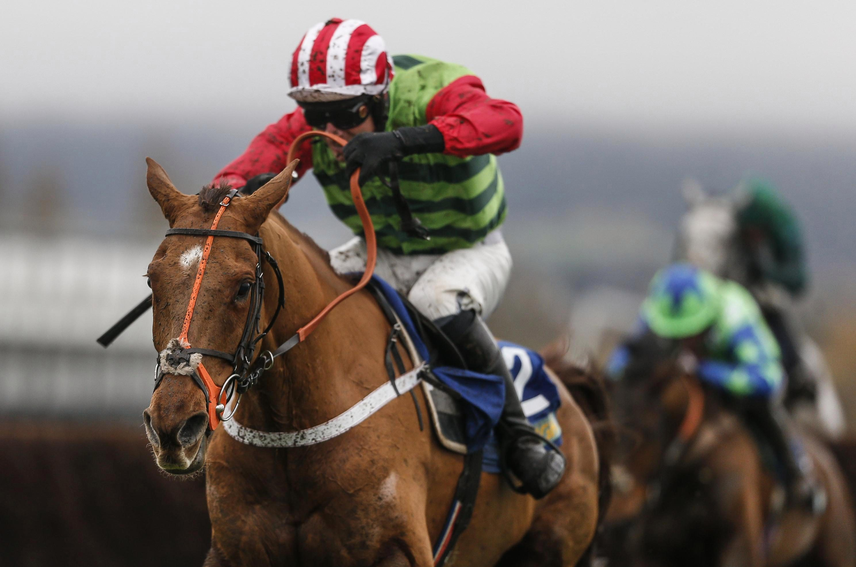 Definitly Red has a Grand National entry but will head for the Gold Cup first