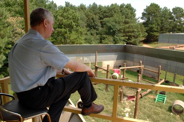 Dr Frans De Wall studies the social behavior of chimpanzees from his tower overlooking the compound at Yerkes Primate Research Center at Emory University in Atlanta