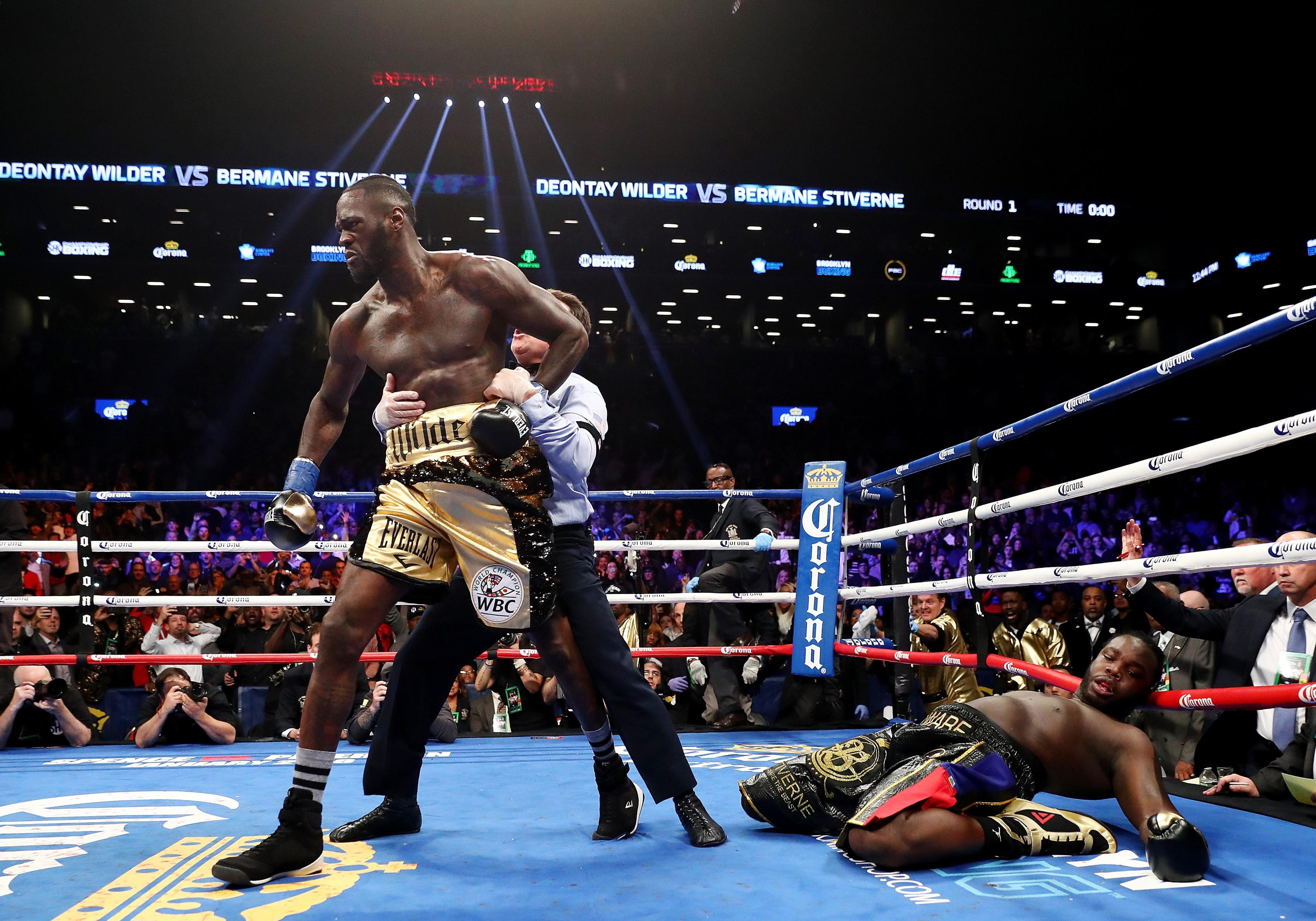 Deontay Wilder brutally knocked out Bermane Stiverne in his last outing inside a round