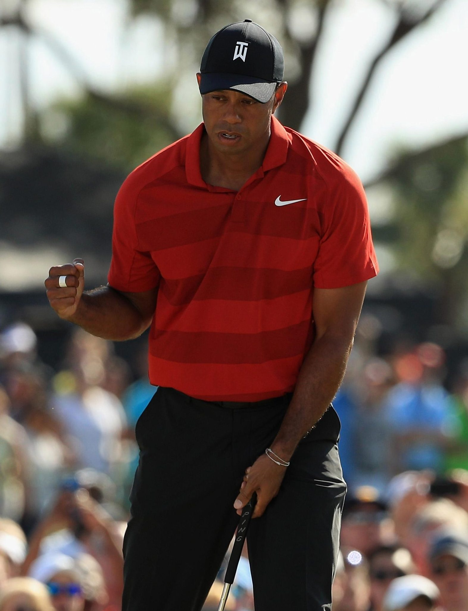 Tiger Woods remarkable surge up the world rankings has him dreaming of a fifth green jacket
