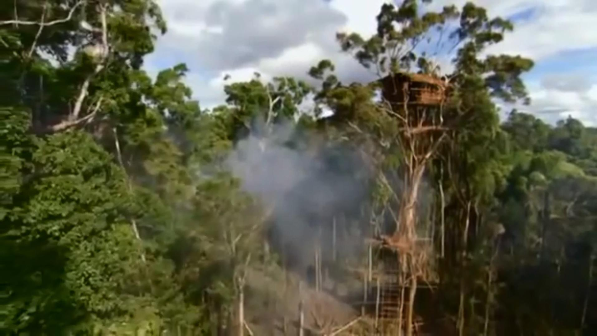 Who Are The Korowai Tribe Where In Indonesia S Papuan Jungle Do They Live And What Was The Human Planet Treehouse Controversy