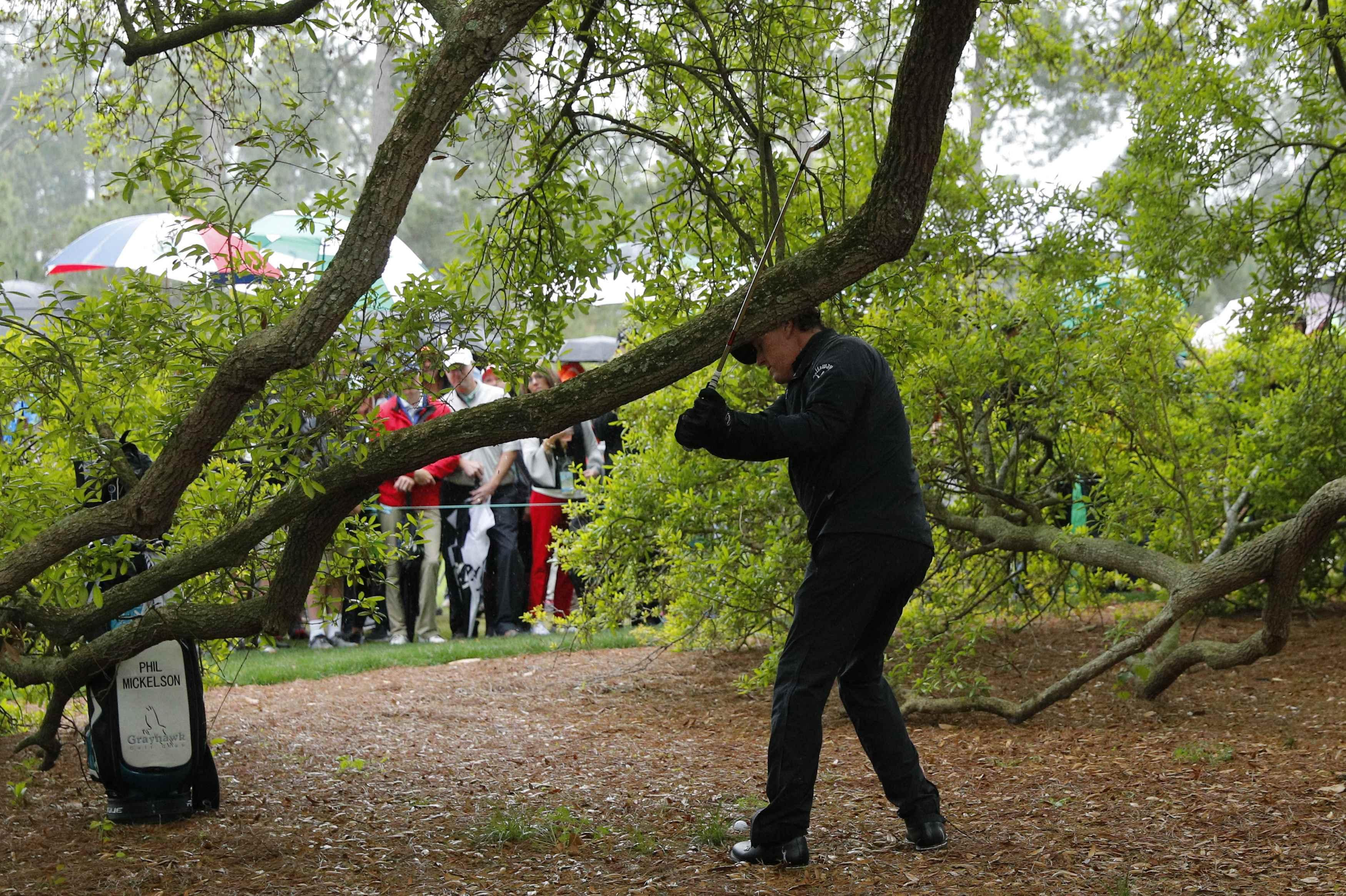 Phil Mickelson practises his backswing with the branch in his way