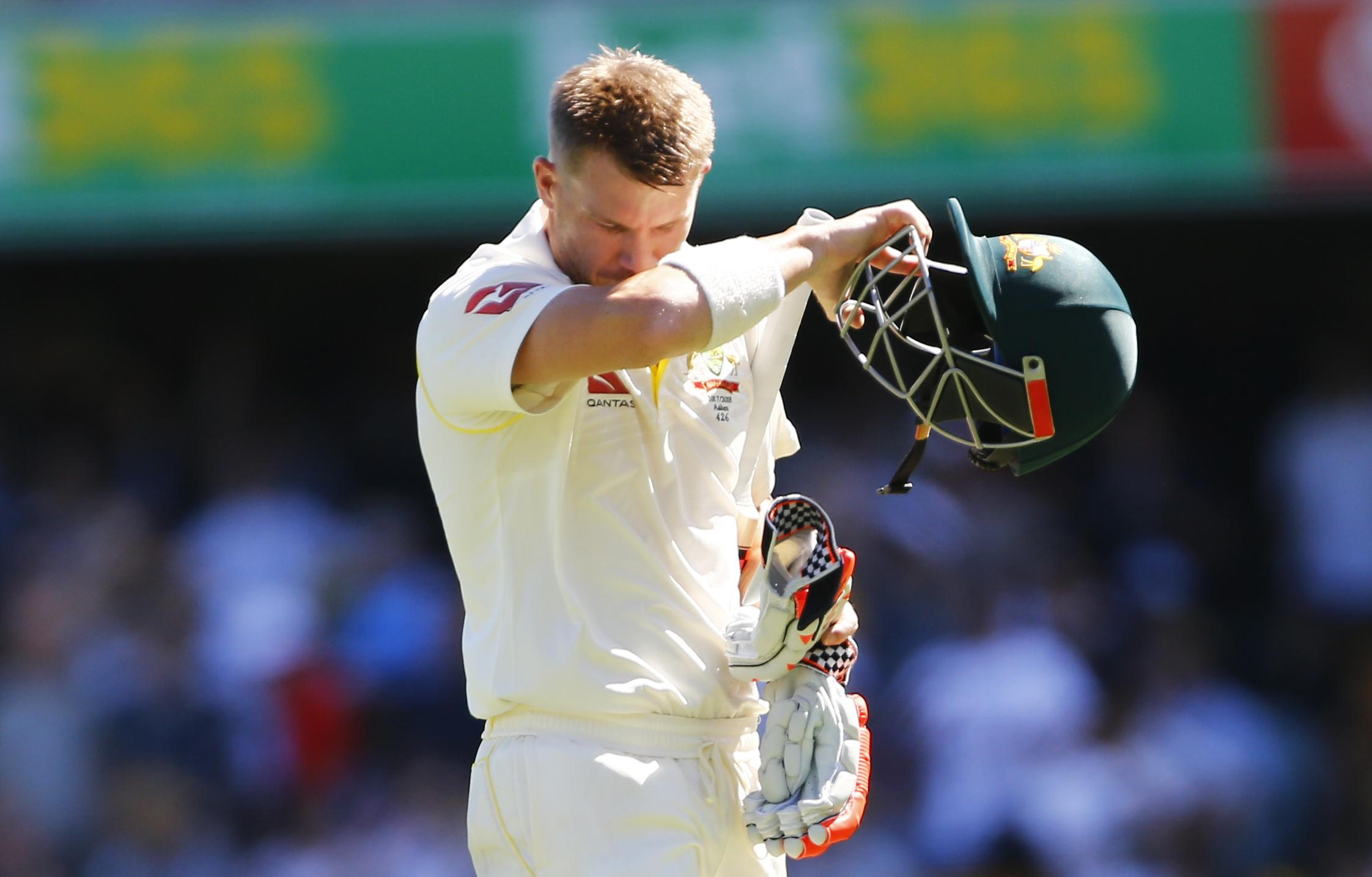David Warner has been a controversial figure in Australian cricket