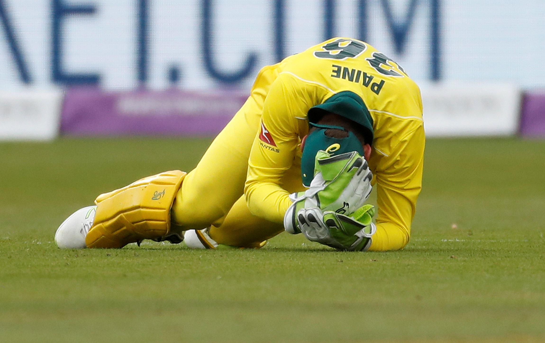 Tim Paine looked in agony after he was thumped in the face by a hopping ball