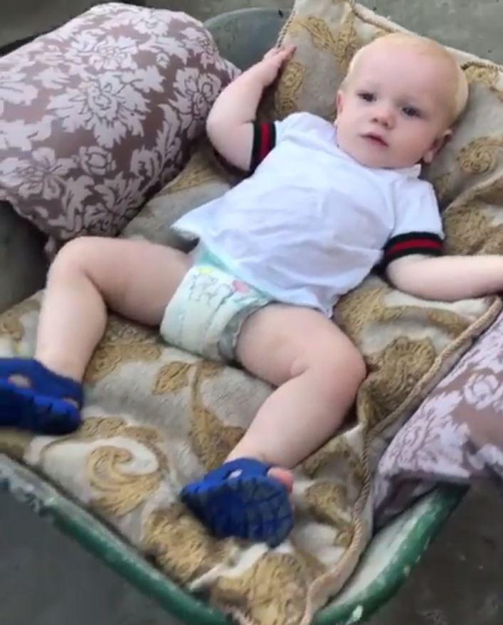 Conor McGregor bizarrely took his son for a walk in a wheelbarrow