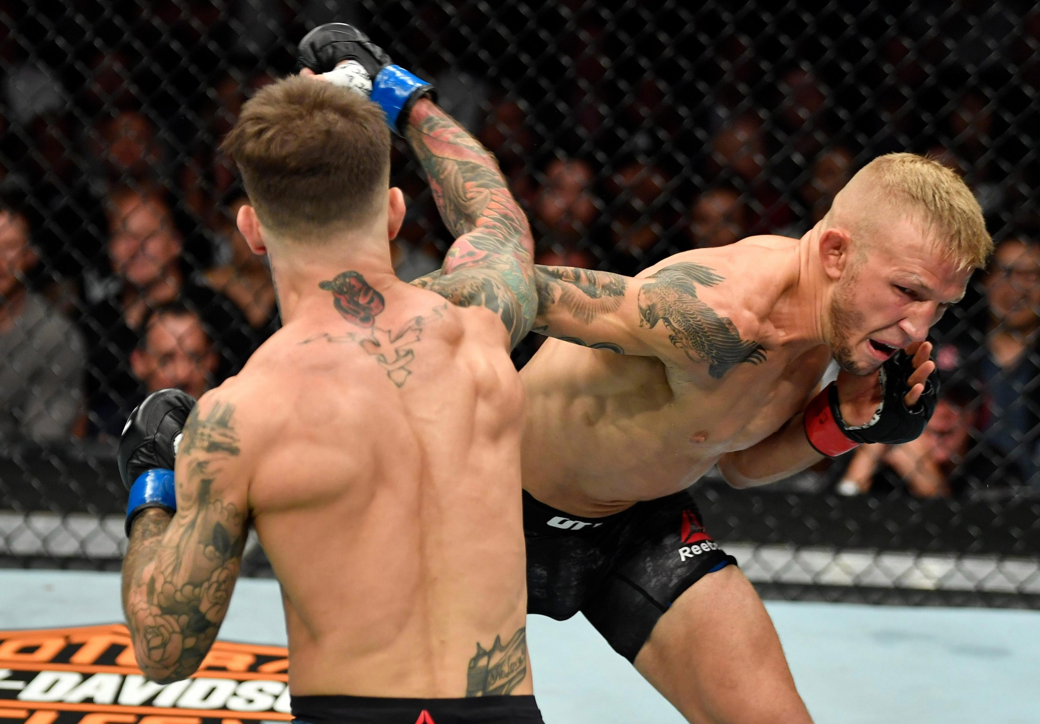 Dillashaw has said he would be willing to face flyweight champ Henry Cejudo following his emphatic win