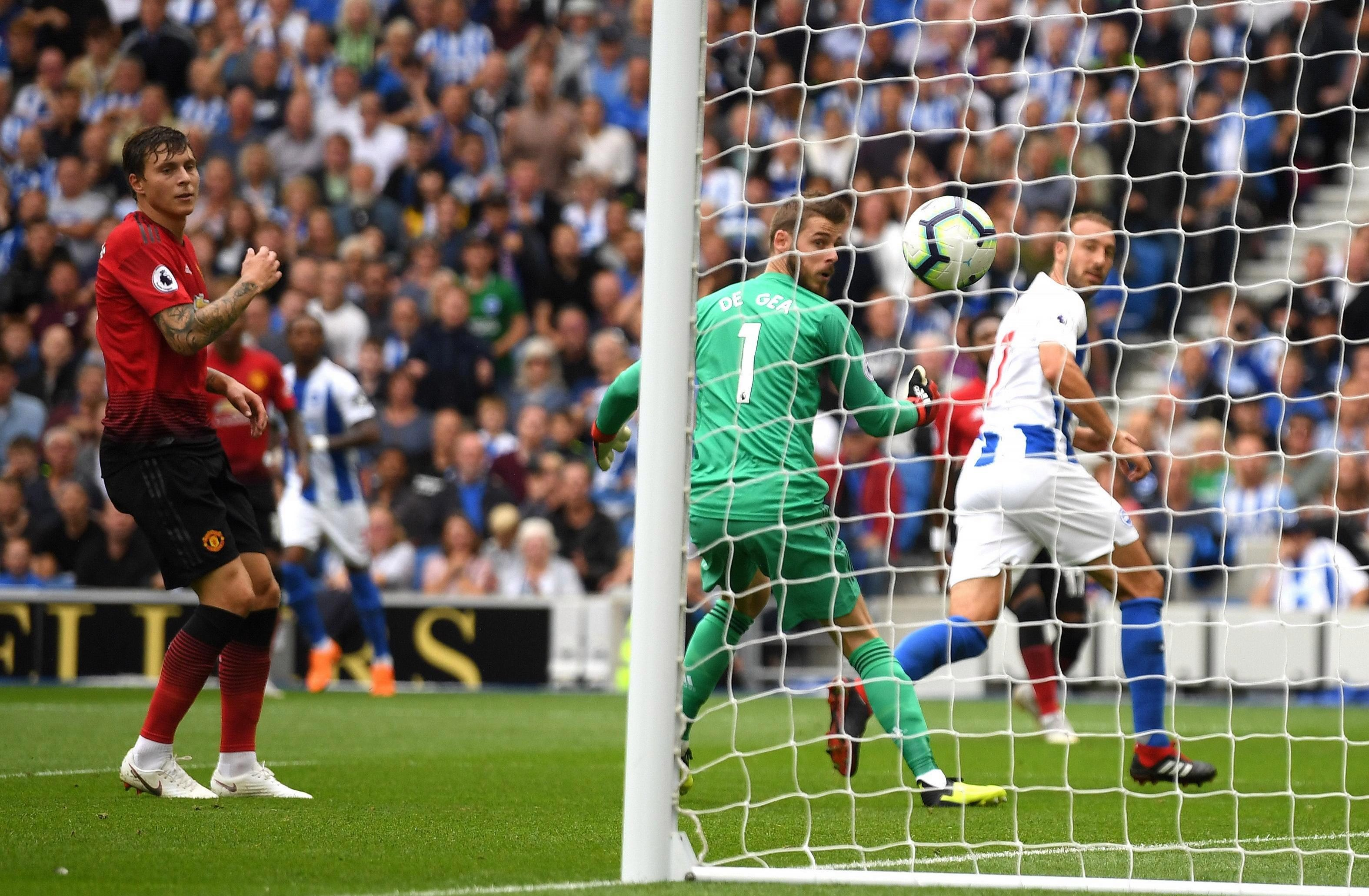 Glenn Murray's phenomenal finish against Manchester United fired Brighton into the lead at the Amex
