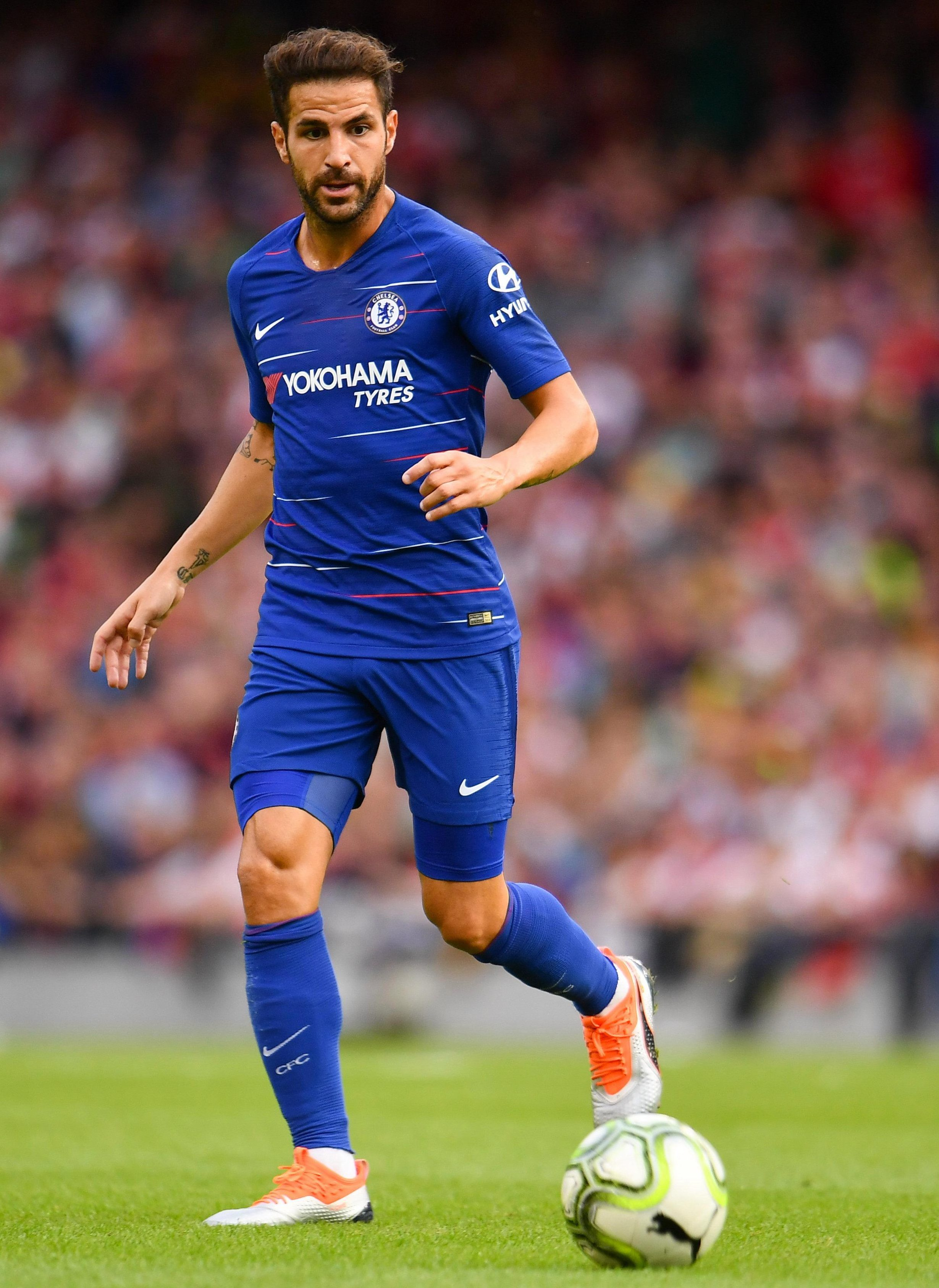 Cesc Fabregas is wanted by AC Milan