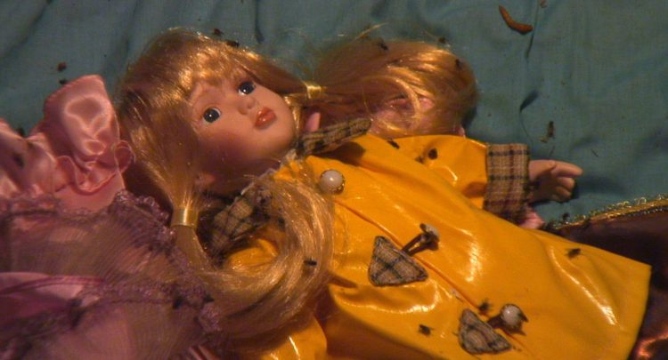 If bed-bugs arent creepy enough, the trio spent the evening in the giant dolls house trying to calm crying dolls,
