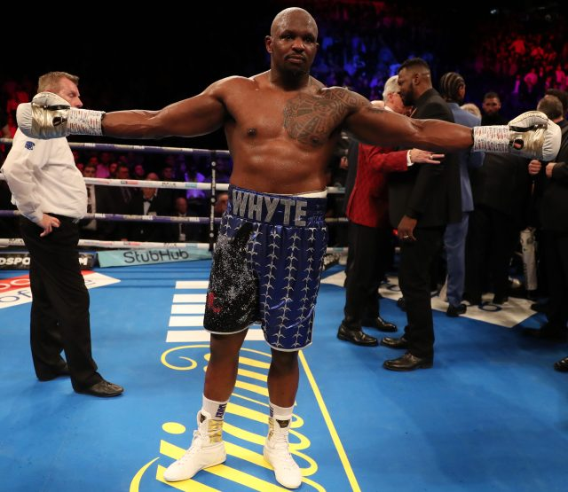 Dillian Whyte Blasts Rival Anthony Joshua As 'Lance