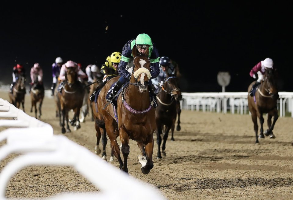 Templegate's racing tips: Leicester, Sandown, Lingfield and