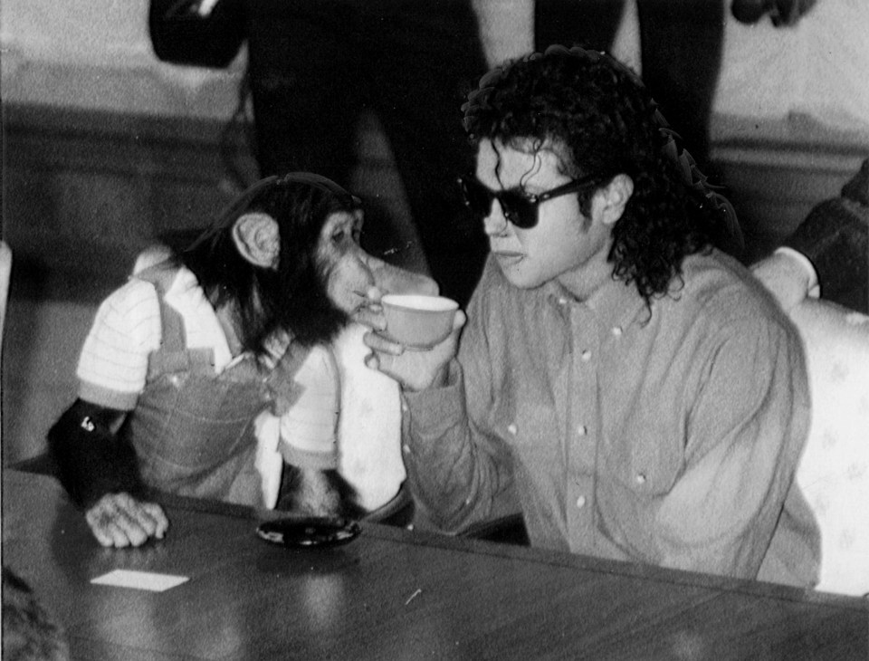 Michael Jackson enjoys a cup of tea with his pet Bubbles at Osaka City Mayoral Hall on September 18, 1987