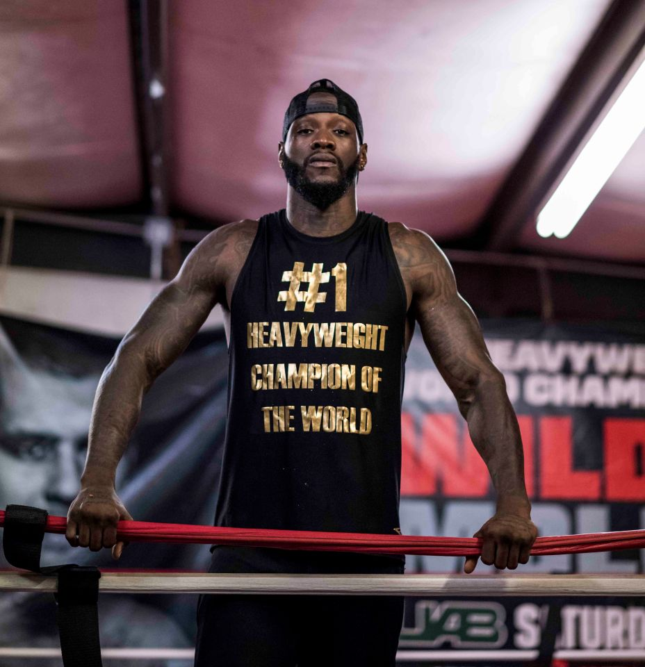 Anthony Joshua Refused FaceTime From Deontay Wilder To