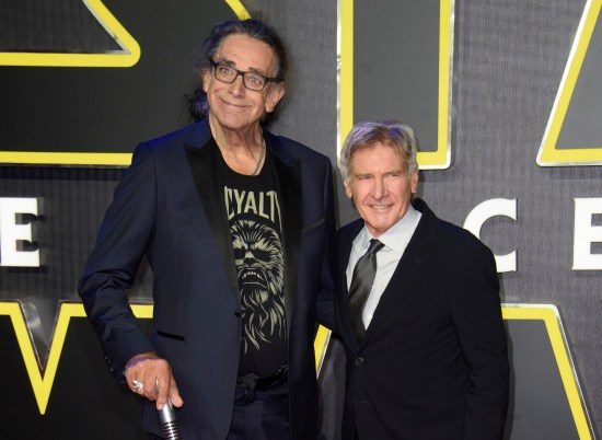 Harrison Ford, who portrayed Han Solo in the franchise, paid a heartbreaking tribute to his co-star Peter Mayhew