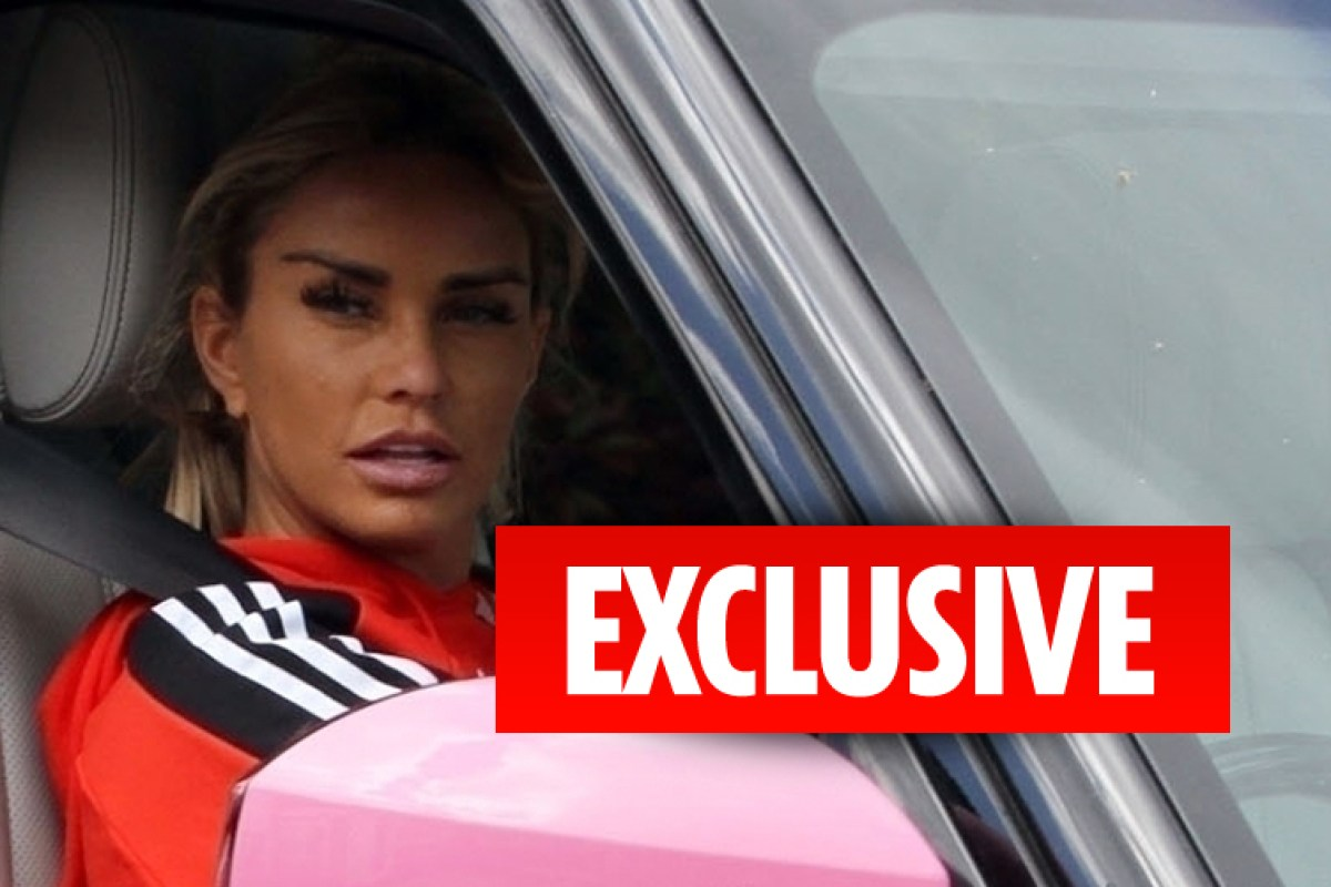 Katie Price pulled over by police AGAIN after cops spot her kids aren't strapped in - just one week after driving ban is lifted