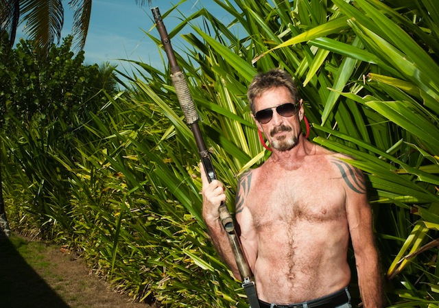 McAfee was born in the UK, but moved to Virginia, US, with his family as a child