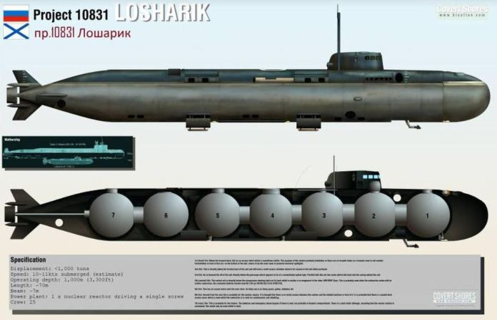 The deep-sea research vessel, named Losharik, had been dubbed a top secret'sabotage submersible'