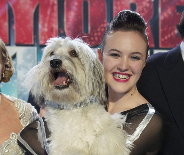 Ashleigh and Pudsey were the first canine act to win Britain's Got Talent in 2012