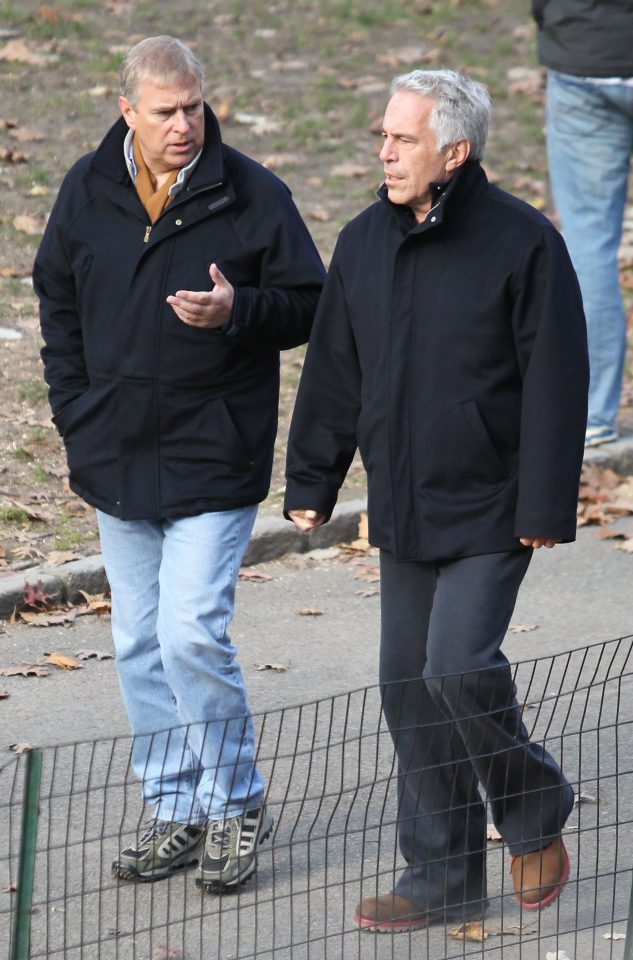 Prince Andrew was pictured going for a stroll through New York with Jeffrey Epstein