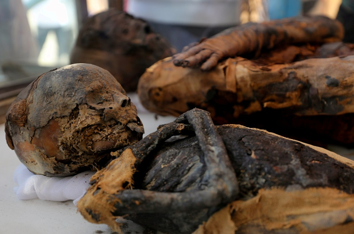 Lots of experts do not want the mummies to be moved to a new home