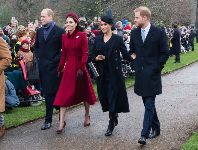 Prince Harry and wife Meghan Markle were involved in the project with Prince William and Kate Middleton