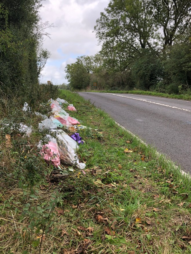 Flowers have left on the side of the road after Harry was killed in August
