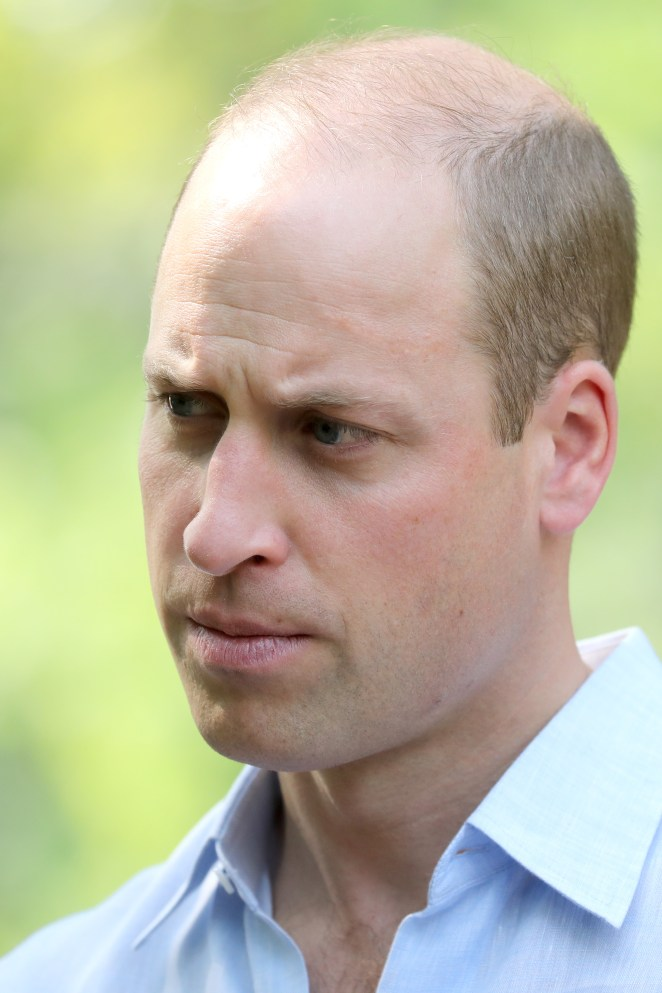 Harry revealed he doesn't see Prince William as much as they used to and that they're 'certainly on different paths'