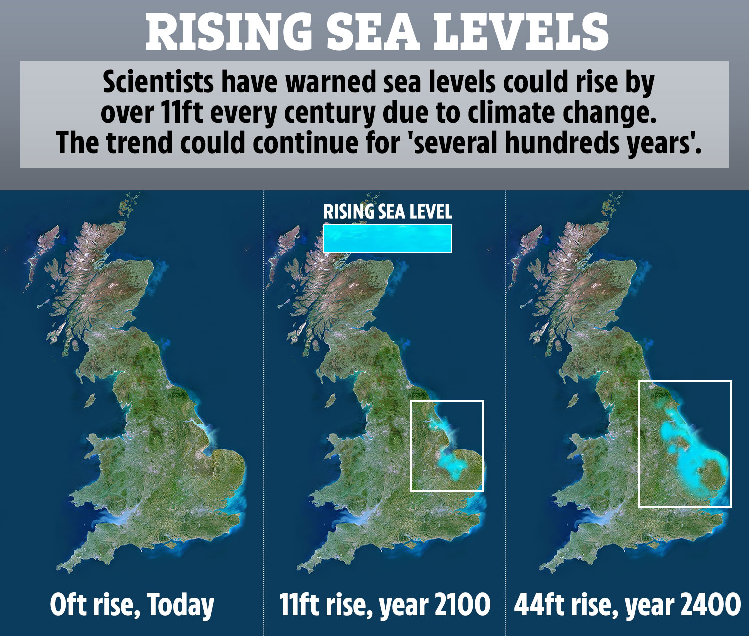 Extreme sea level rise of 11 FEET a century could drown major cities by 2100