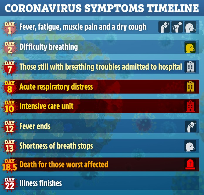 Scientists produced daily breakdown of typical Covid-19 symptoms