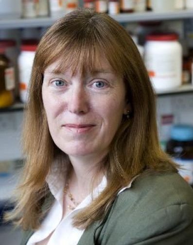 Professor Sarah Gilbert works on a coronavirus vaccine with a team from the University of Oxford