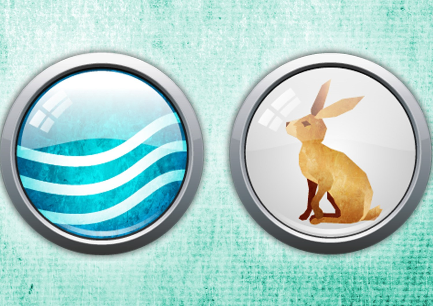 Chinese Zodiac Animal What Is A Water Rabbit And What Year Is It