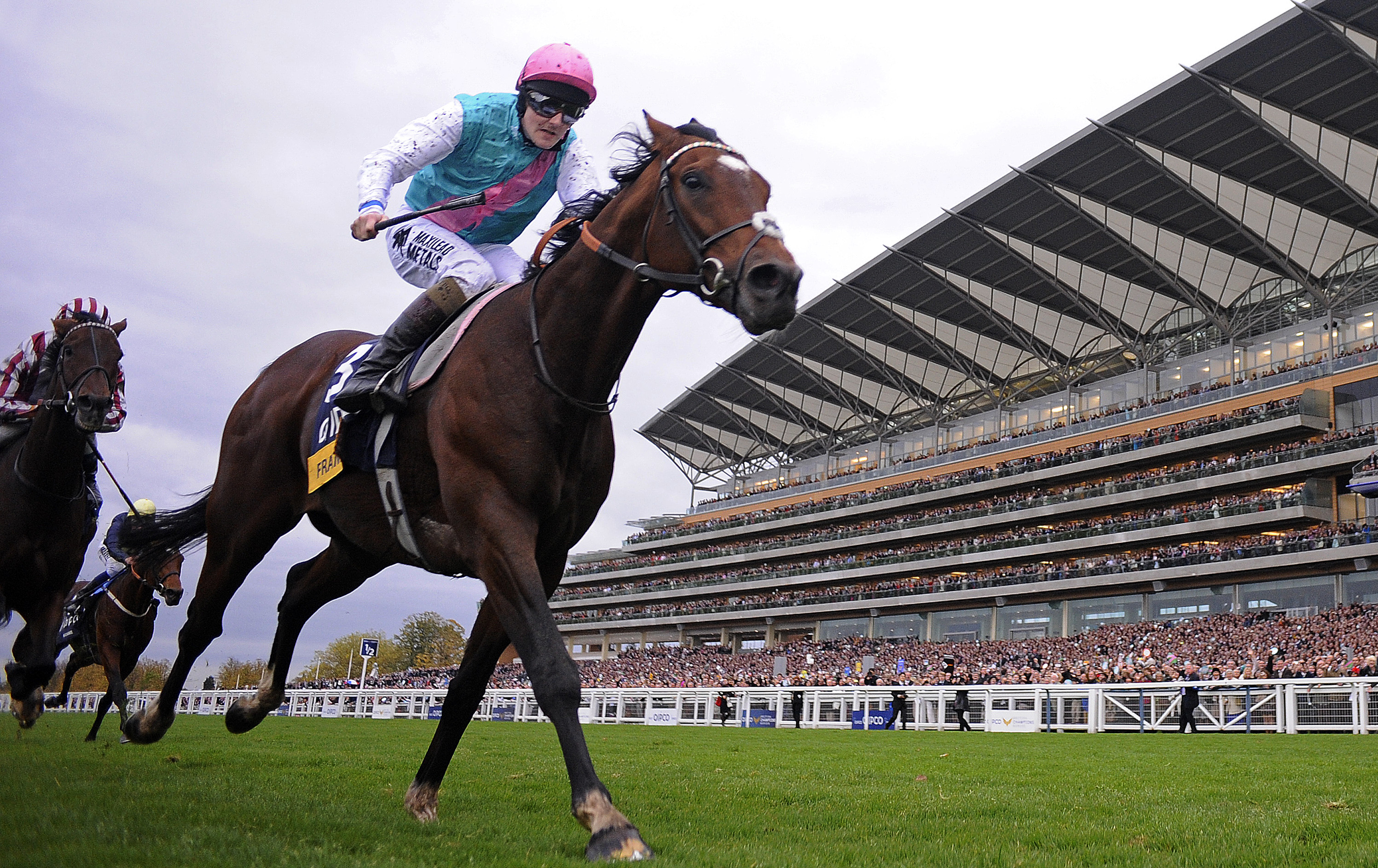 British Champions Day: Best betting tips for the live ITV racing at Ascot today