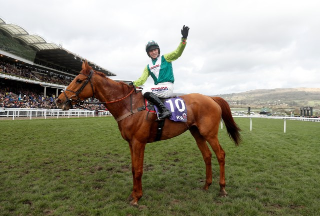 Topofthegame provided Cobden with a memorable winner in the 2018 RSA at Cheltenham